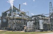 Unas fichas a la biomasa