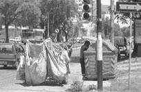 Ley deenvases logra erradicar trabajo infantil en 200 familias