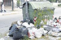 Olivera denunció ataquespolíticos a contenedores de basura de la IMM