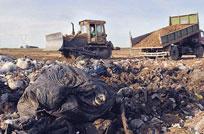 Proponen plan nacional para basura