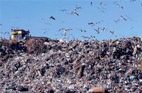Proyecto de Mujica para procesar basura genera dudas a intendentes