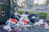 Colapsaron los contenedores de Pocitos e IMM investiga causas