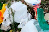 Intendencia busca disminuir la cantidad de bolsas plásticas