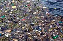 Isla de basura ya mide como Argentina