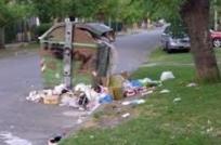Comuna Canaria preocupada por destrucción de contenedores