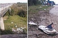 Con el apoyo ciudadano, la realidad del vertedero de residuos domiciliarios es muy diferente, dijo Tiscordio