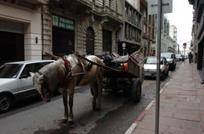 preparan-prohibicion-de ingreso de los carritos
