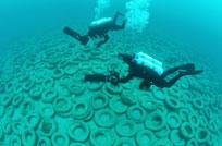20150819 arrecifes